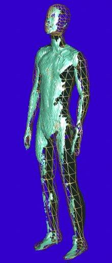 Anpassung des Menschmodells (gold) an die Sensordaten (grün)